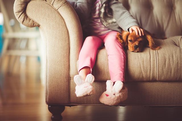 Educación ambiental y mascotas: beneficios para lxs peques