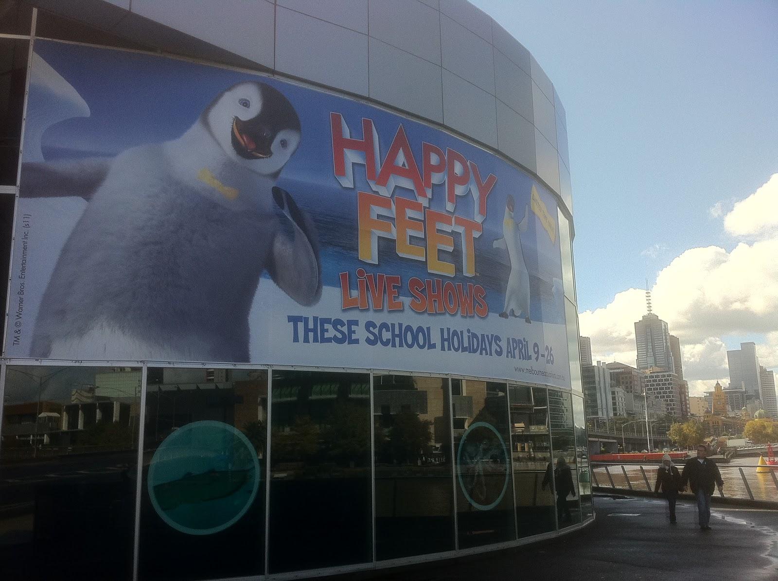 The real Happy Feet #penguin | St louis zoo, Photography ... |Happy Feet Zoo Aquarium