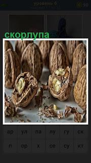 расколотая скорлупа от орехов и внутренности наружу