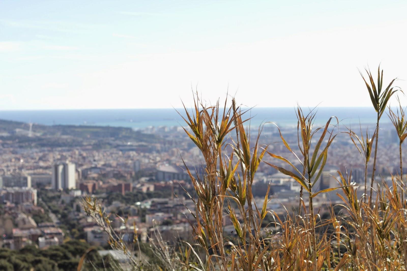 barcelona - un domingo cualquiera