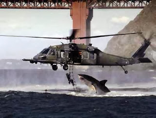Shark Attacks Helicopter In San Francisco