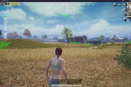 Cara cheat pubgm emulator terbaru season 7 fix update