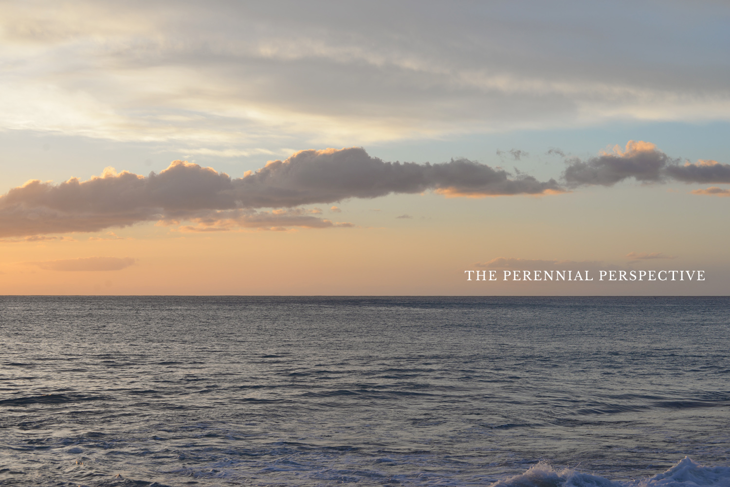 the perennial perspective | life as a perennial mom | ramblingrenovators.ca