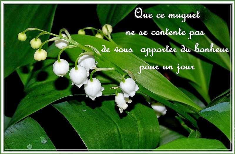 Images pour blogs et facebook muguet porte bonheur - Photos muguet porte bonheur ...