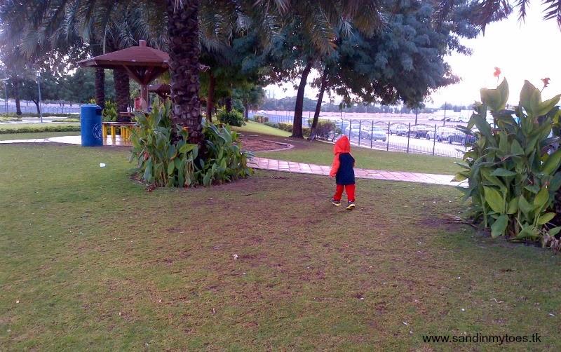 Running after birds
