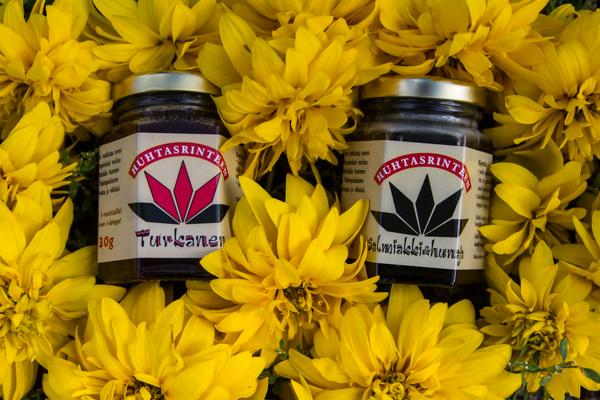 salmiakkihunaja maustettu hunaja lähihunaja keltapallero keltainen kukkakuva_
