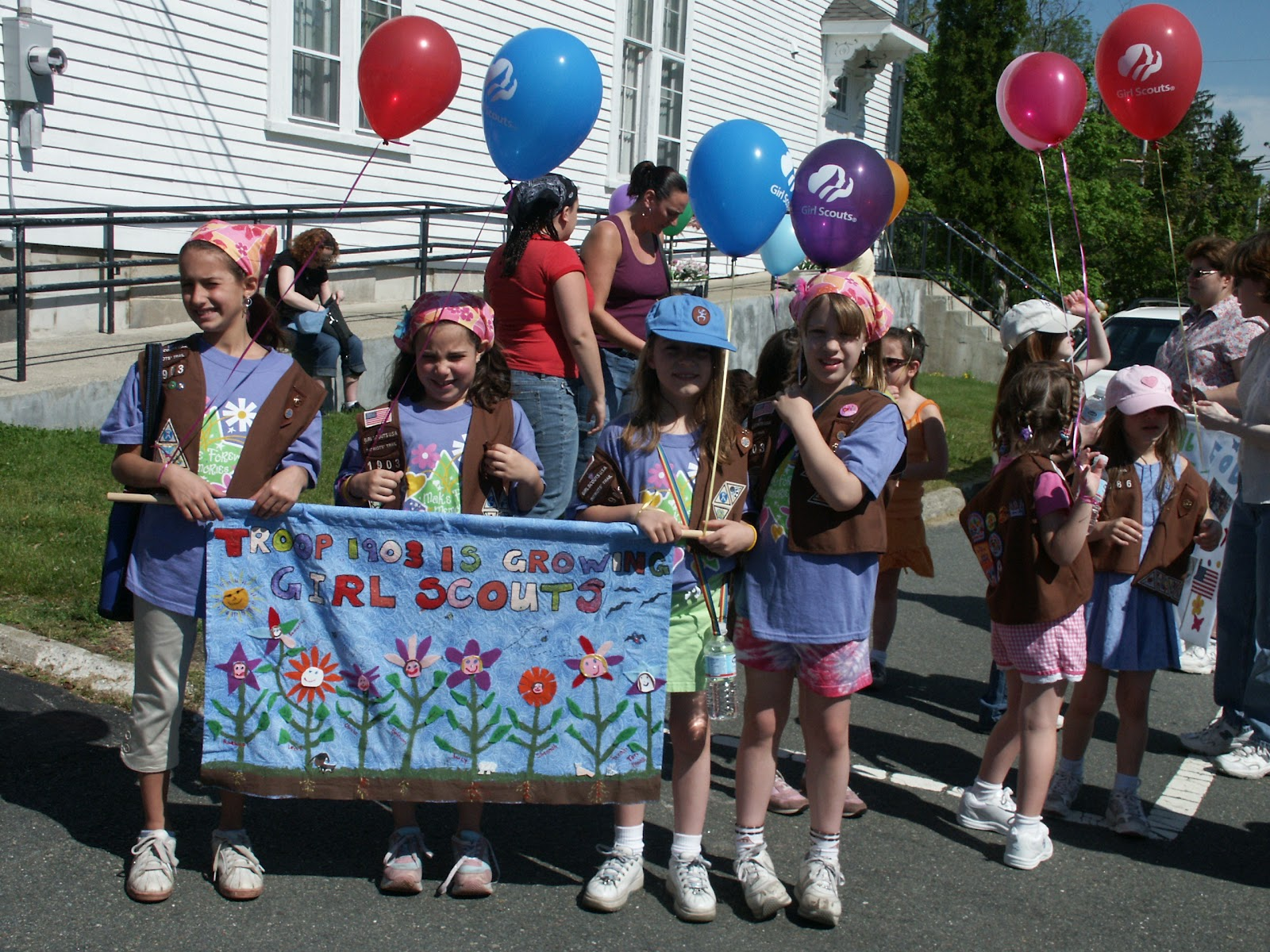 Flower Girl Scout Daisy Banner   Gardening: Flower and