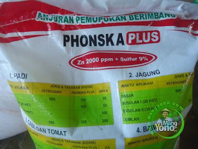 FOTO 2 : NPK Phonska Plus PT Petrokomia Gresik (PG)