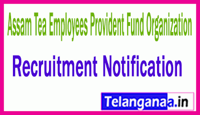 Assam Tea Employees Provident Fund Organization ATPPF Recruitment Notification