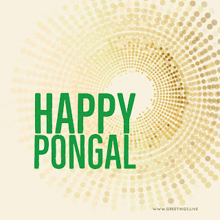 Free Exclusive Happy Pongal Wishes High quality Image