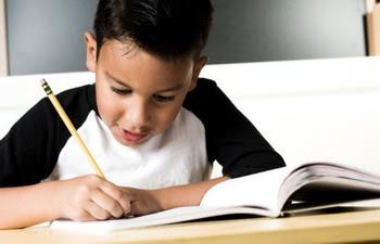 Contoh Soal Pilihan Ganda Mendengarkan Wawancara, Menanggapi Cerita tentang Tokoh, Membaca Cerita Anak, dan Menulis puisi