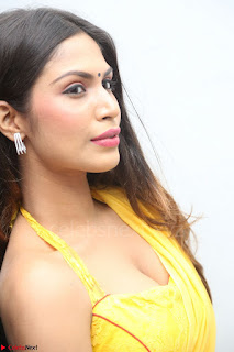 Nishigandha in Yellow backless Strapless Choli and Half Saree Spicy Pics 072.JPG