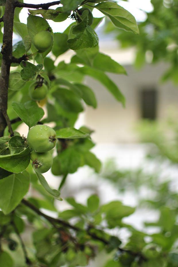 äppelkart hannashantverk.blogspot.se