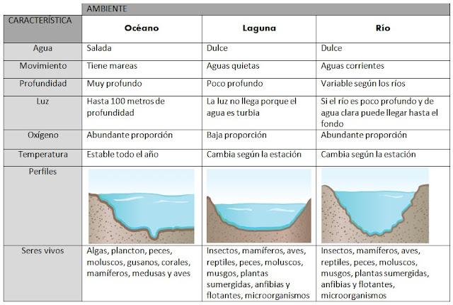 características de ambientes acuáticos