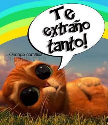 Imagenes De Te Extrano Con Frases Bonitas Imagenes Con Frases