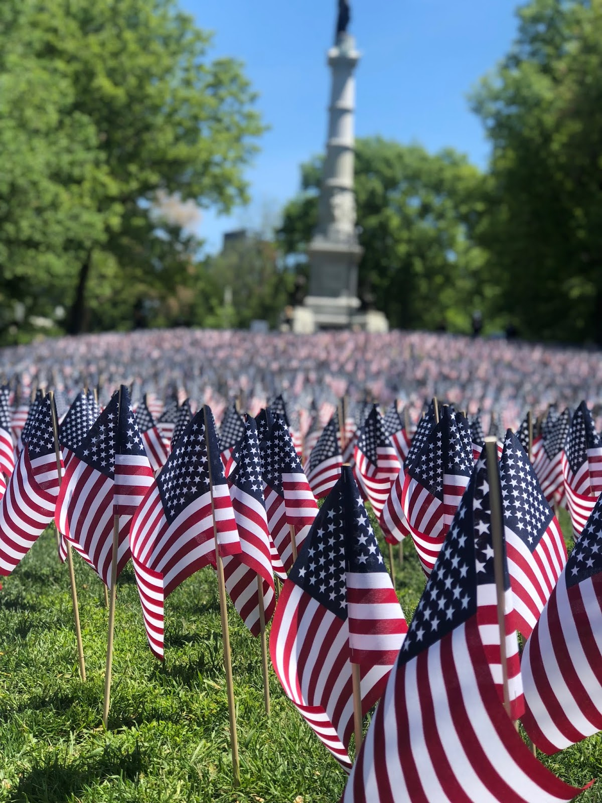 America flags for memorial day, boston common, memorial day