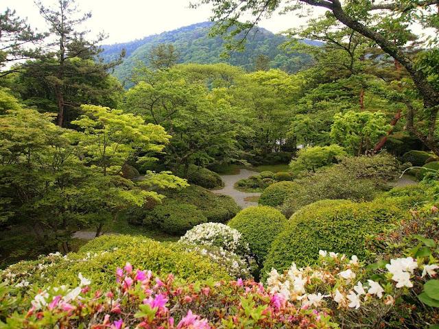 東海道 国道1号 蓬莱園 ツツジ