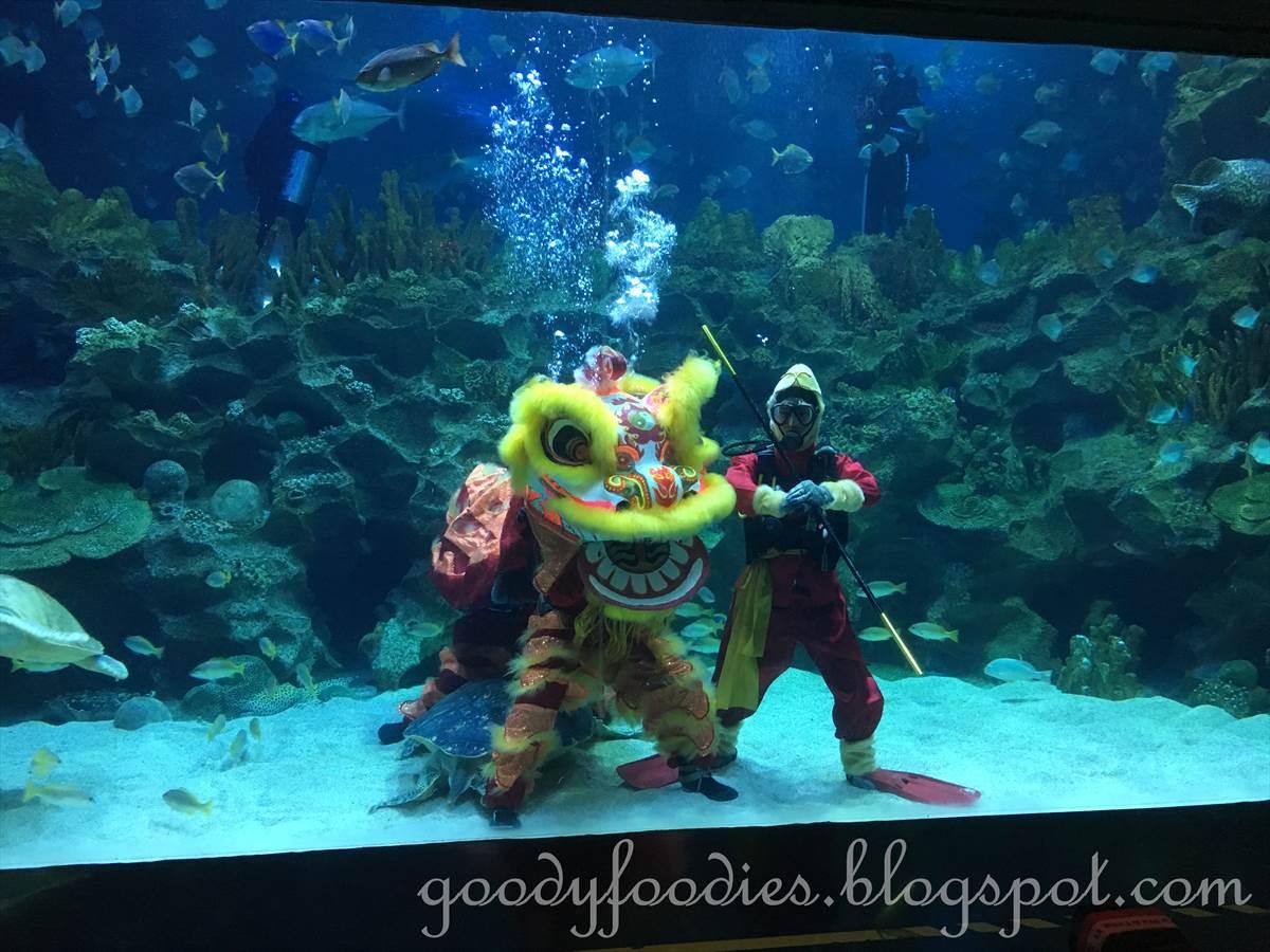 Aquaria KLCC, a world-class aquarium in Kuala Lumpur – KOSUBLOG