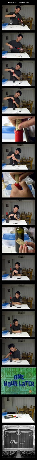 Nach dem Streit - Samstag Abend alleine Wein trinken lustig