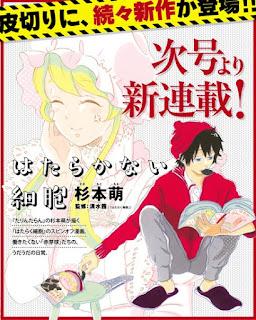 """El manga """"Hataraku Saibo"""" de Akane Shimizu tendrá un spinoff"""