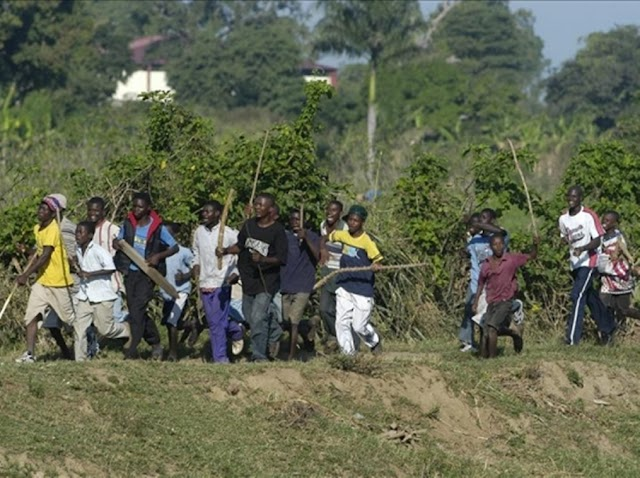"¡Nos invaden!-Video-Neyba: Turba Haitianos por ""quemar vivos"" inspectores forestales"