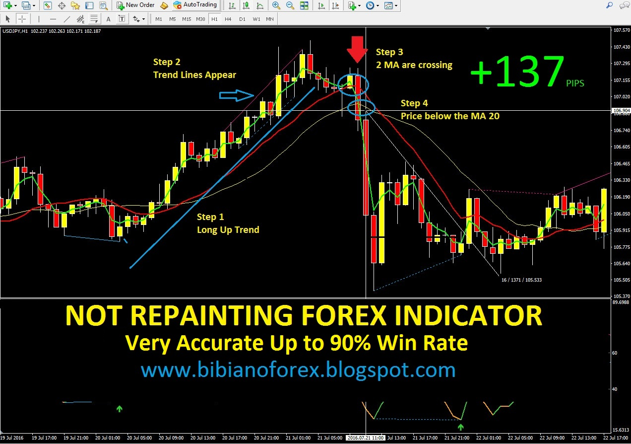 Forex best indicator 2016