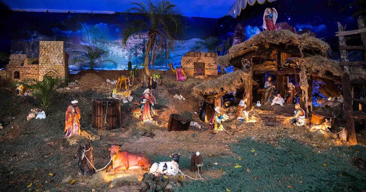 Christmas Crib Pulkoodu St Francis Assisi Cathedral