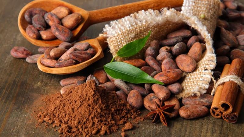 cacao desgrasado en la dieta dukan