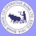 Bihar State Cooperative Bank Recruitment 2013 - Chief Executive Officer jobs