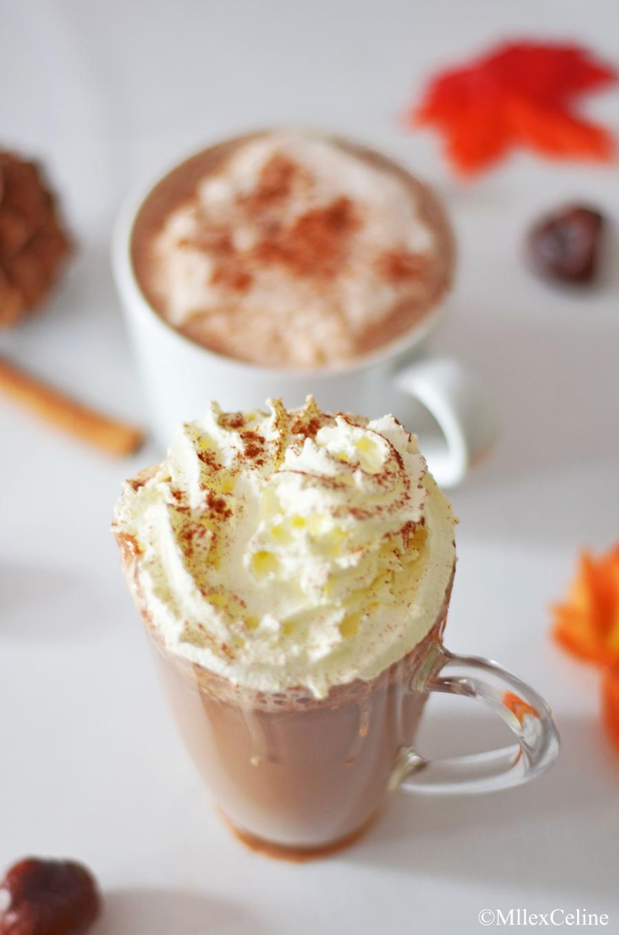 boissons chaudes cannelle cappuccino chocolat chaud blog mode beaute lifestyle lyon