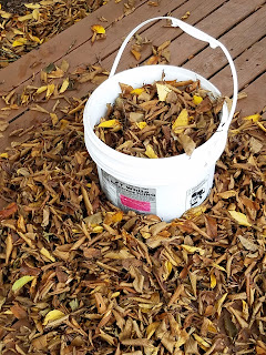 icing bucket for collecting dead leaves