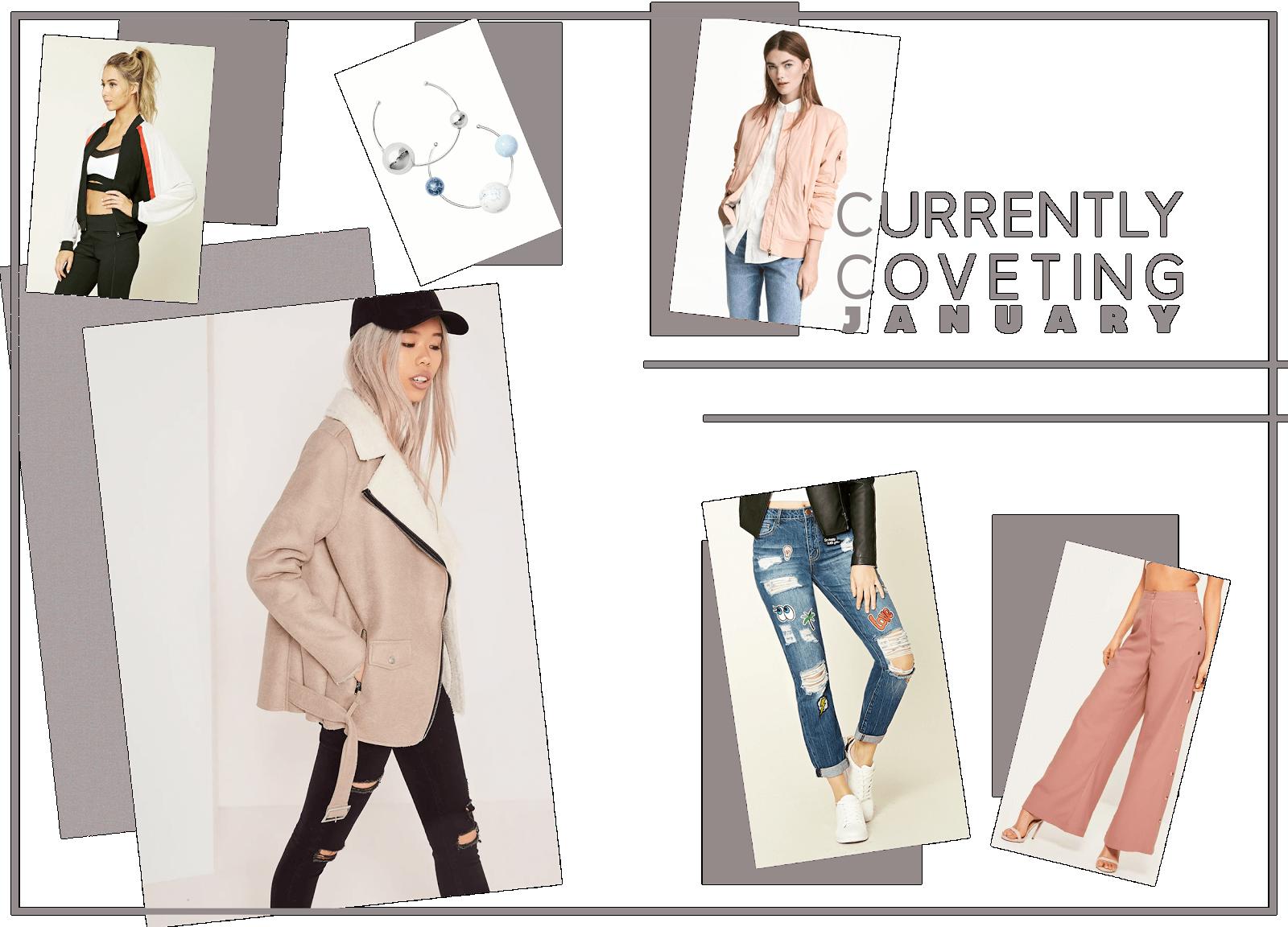january collective wishlist uk fashion blogger
