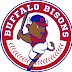 Bisons beaten by Knights' extra-base hits
