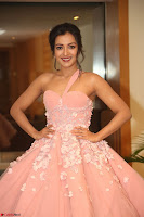Catherine Tressa looks super cute in strapless sleeveless deep short dress at 64th Jio Filmfare Awards South ~  Exclusive 174.JPG
