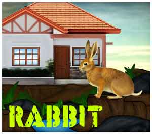 Mirchigames Rabbit Resque