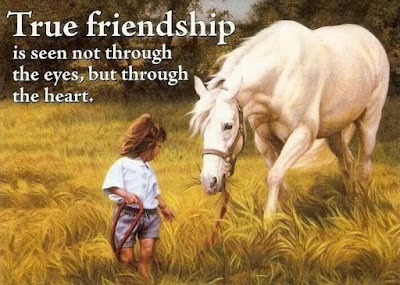 true-friendship-is-seen-not-through-the-eyes-