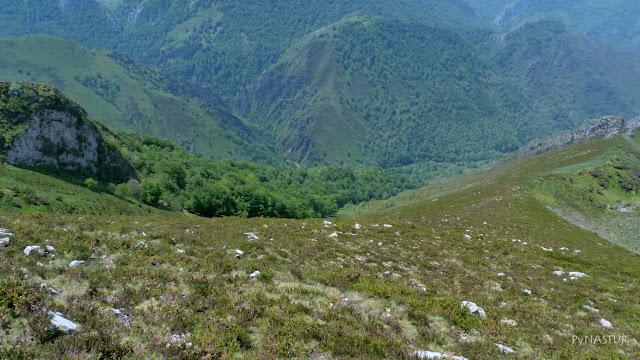 Vallina y Hayedo de Luiña - Sierra de Las Aves - Asturias