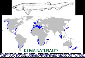 Distribuição geográfica do Tubarão Albafar