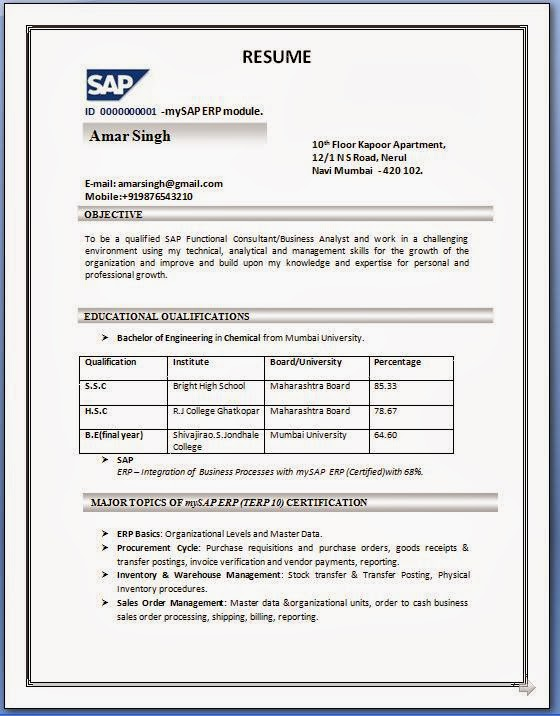 SAP SD Resume Format - professional fresher resume