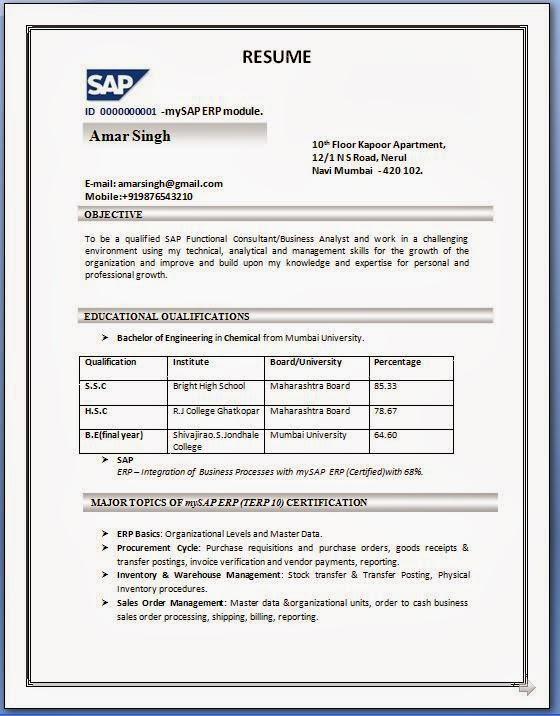 Resume Examples Pdf Resume Cv Cover Letter. Resume Format Pdf