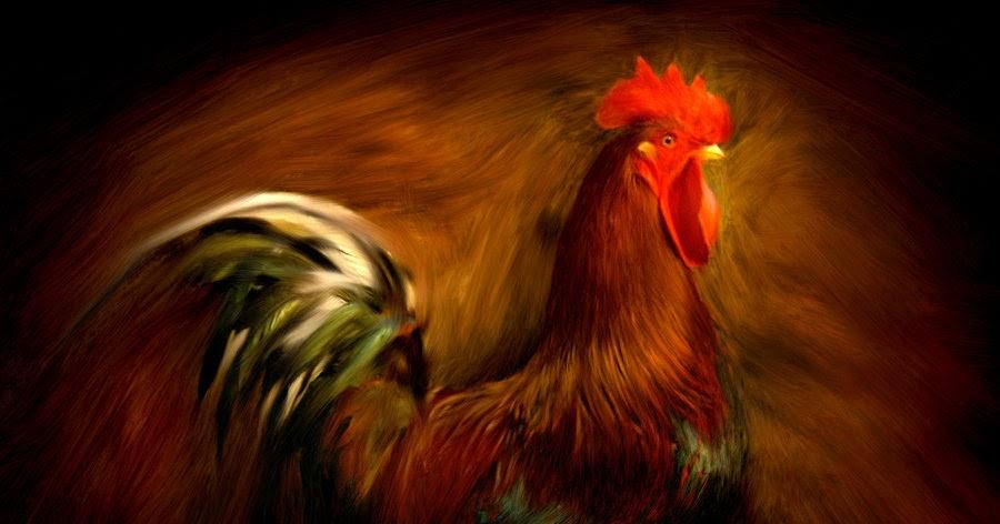 Tafsir Mimpi Tentang Ayam Dalam Togel Online