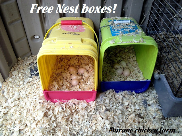 Make free nest boxes