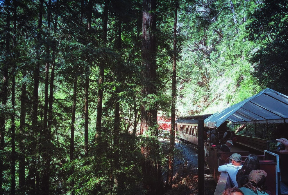 Roaring Camp steam train through the redwoods to the boardwalk in Santa Cruz, California, a quick weekend trip from the San Francisco Bay Area.