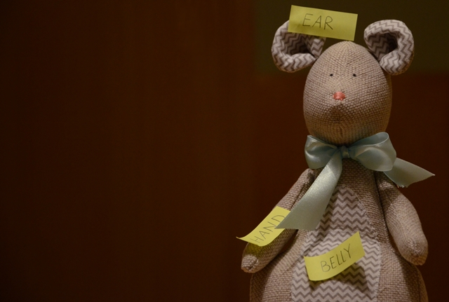 fiszki na pluszowej myszce