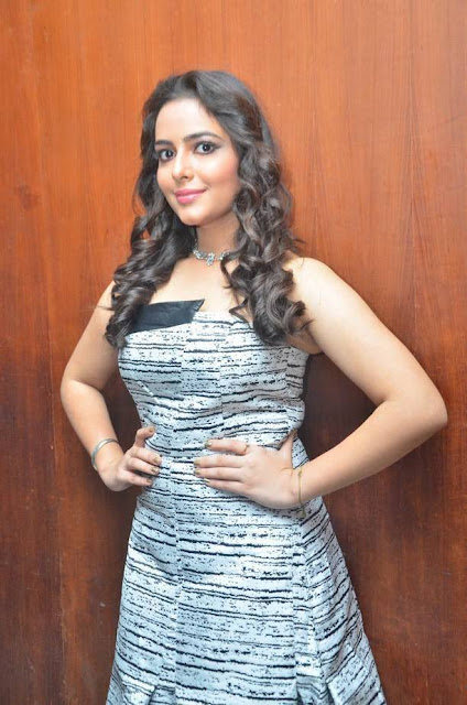 Aanchal Munjal Stills At Sei Movie Audio Launch