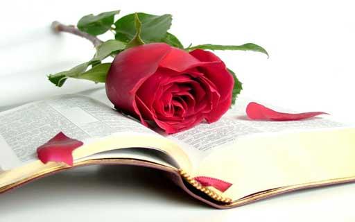 Libros Recomendados Sant Jordi 2016 (I)