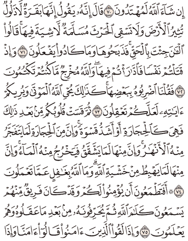 Tafsir Surat Al-Baqarah Ayat 71, 72, 73, 74, 75