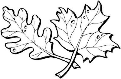 скачать трафарет листья дуба и клена