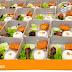 TEMPAT PESAN NASI BOX MURAH DI JOGJAKARTA | 085 726 123 164 (WA)