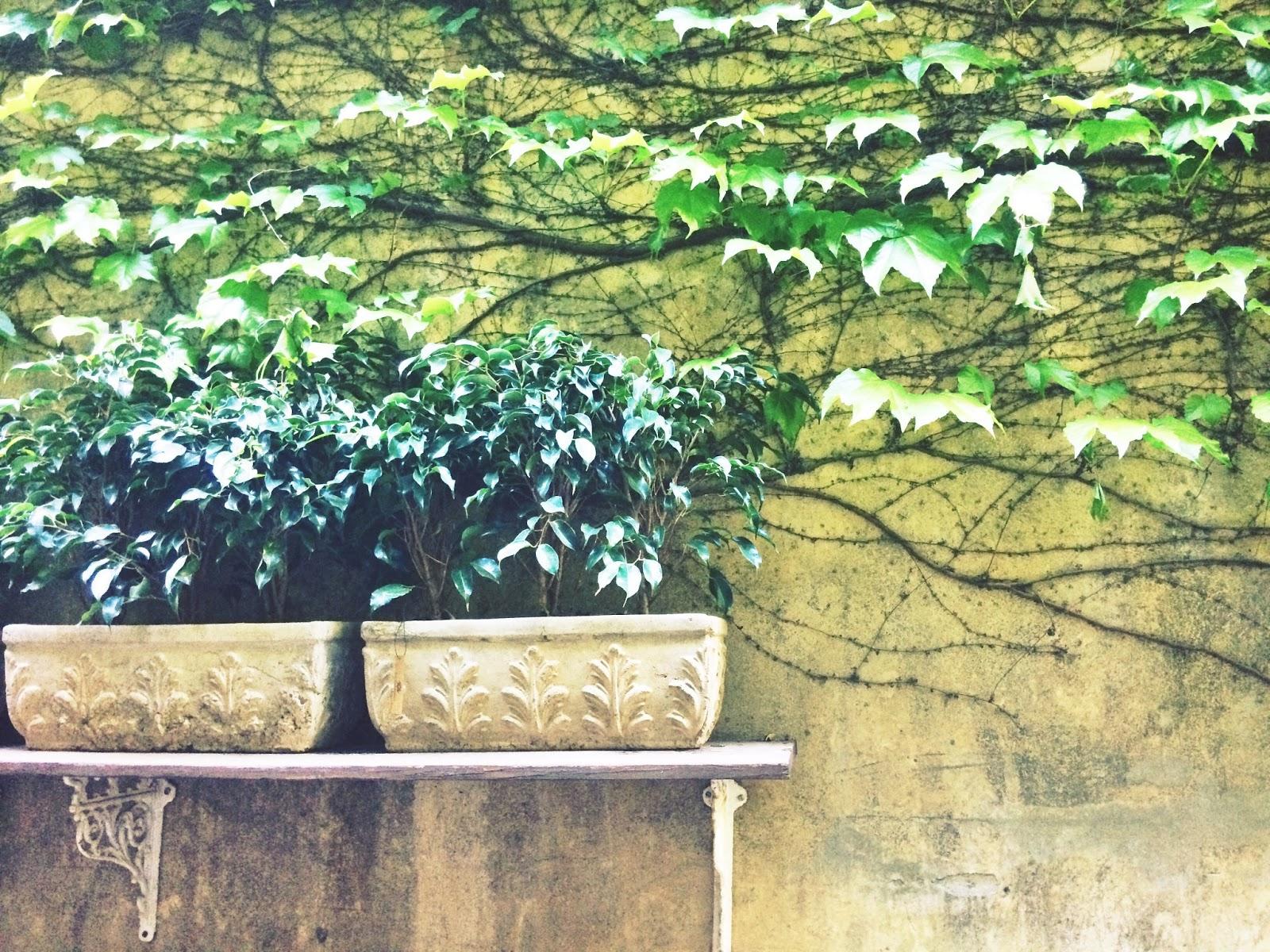 Paul French Gallery: flores, diseño, té y mucho más - Loving Buenos ...